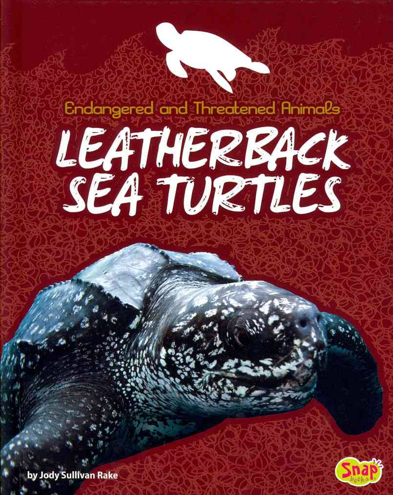 Leatherback Sea Turtles By Rake, Jody Sullivan